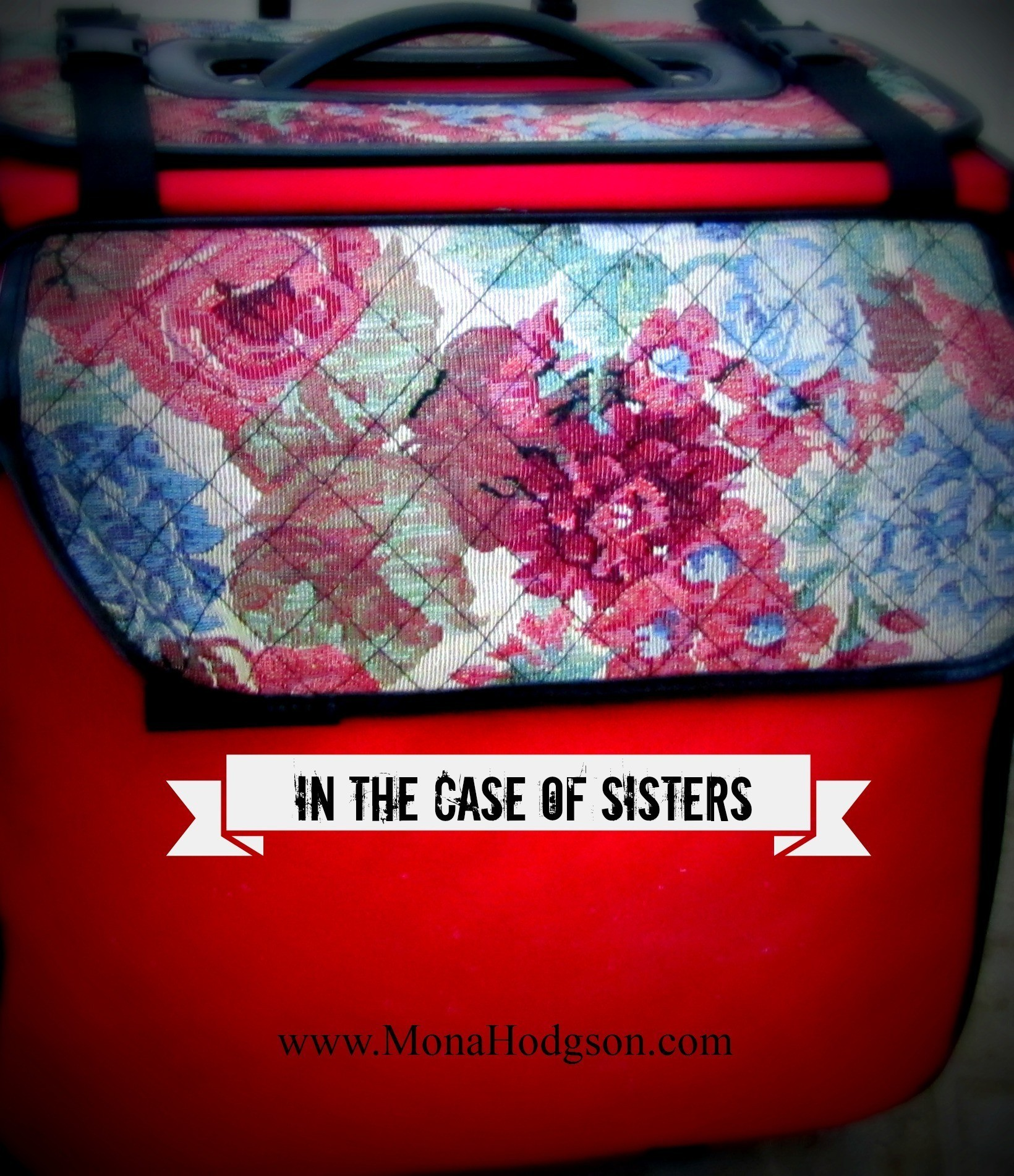 In the Case of Sisters Blog
