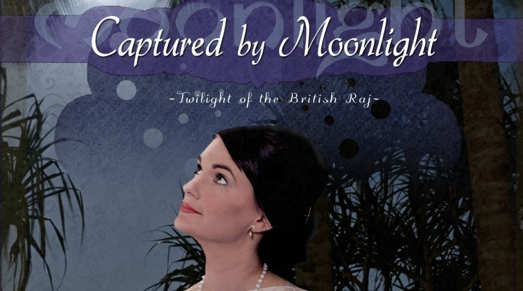 Captured by Moonlight Banner